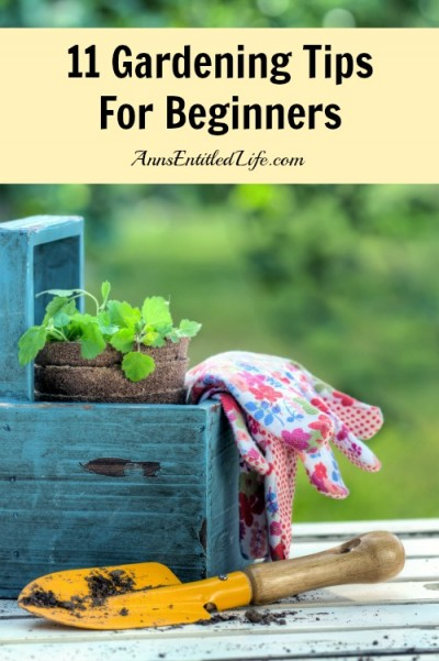 11-gardening-tips-for-beginners