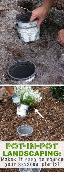 20-Insanely-Clever-Gardening-Tips-And-Ideas