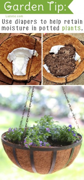 20-Insanely-Clever-Gardening-Tips-And-Ideas6