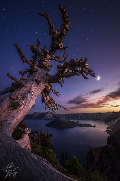 Crater Lake National Park, Oregon - http://www.flickr.com/photos/schmalpal/8053096080/in/photostream/