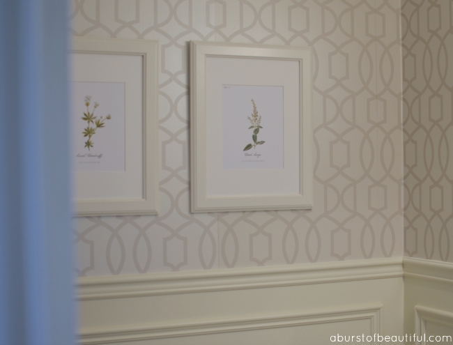 Botanical Prints_Powder Room_4