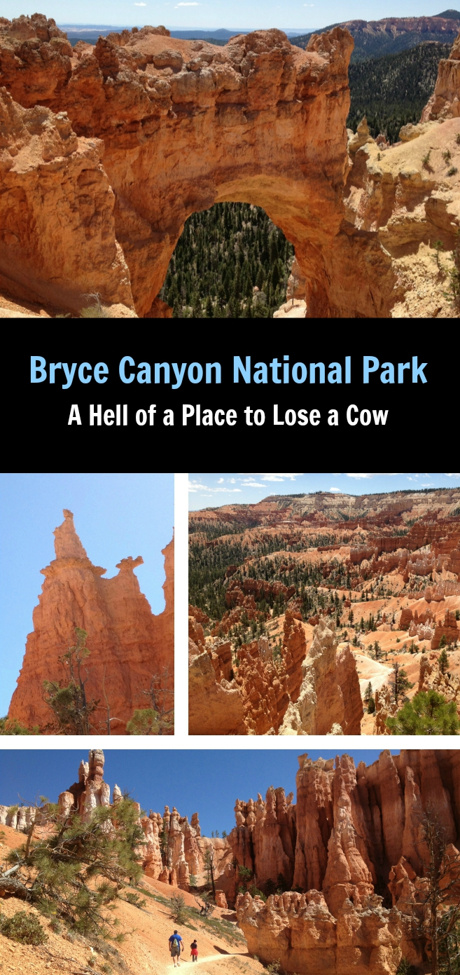 Enjoy a beautiful day trip to Bryce Canyon National Park.