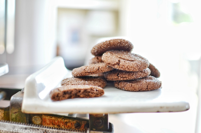Chocolate Peanut Butter Cookies_2