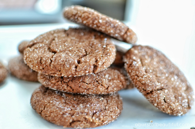 Chocolate Peanut Butter Cookies_3