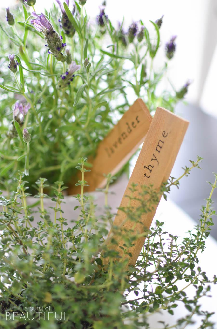 DIY-Herb-Markers_28