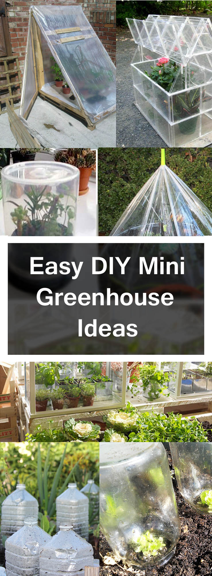 DIY greenhouse Ideas pin