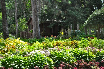 Munsinger Garden Woodland area