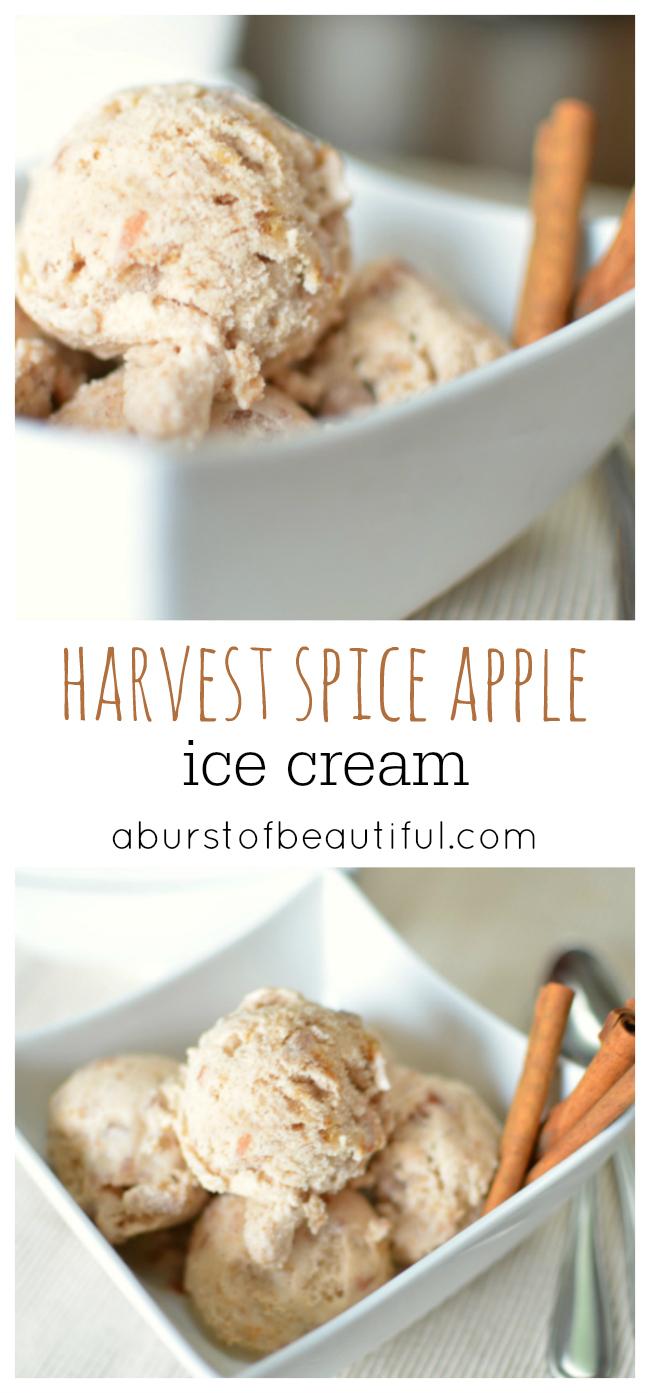 Harvest Spice Apple Ice Cream