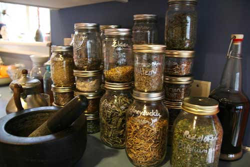 Herbs-storing