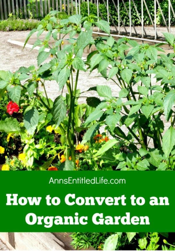 How-to-Convert-to-an-Organic-Garden