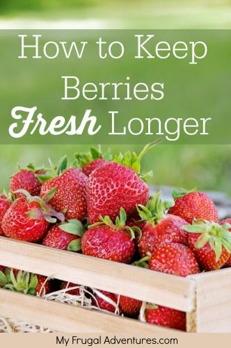 How-to-keep-Berries-Fresh-Longer-332x500