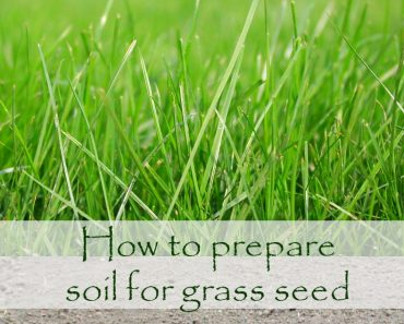 How to prepare soil for grass seed