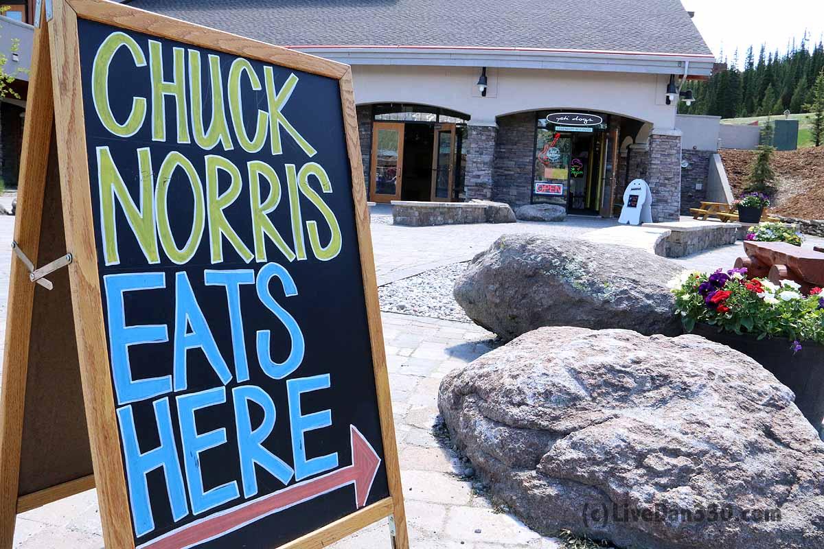 chuck norris eats here