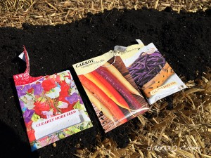 seeds for the straw bale garden