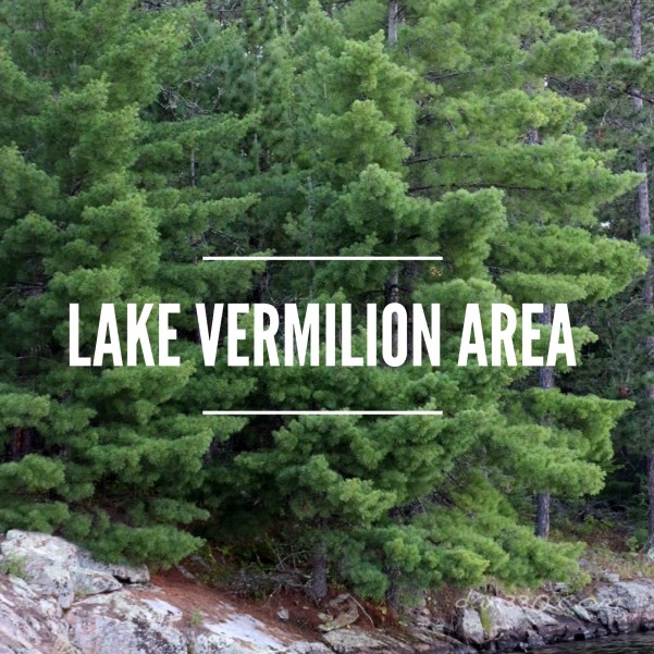 Lake VErmilion Area