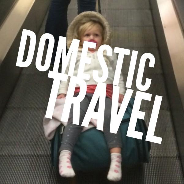 domestic travel