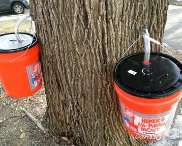 sap buckets