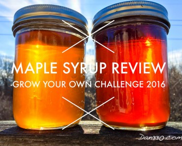 maple syrup review