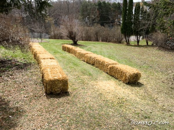 laying out bales for a gourd tunnel