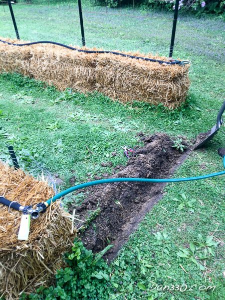 irrigation for a gourd tunnel