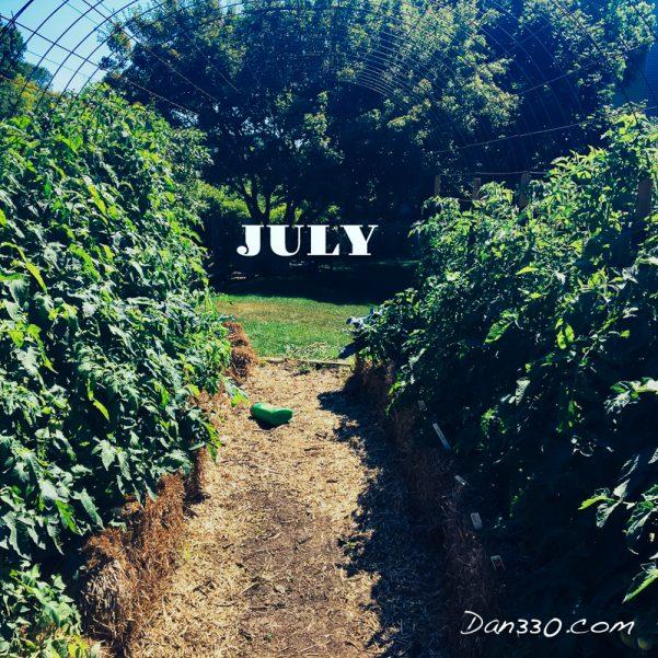 july tomato