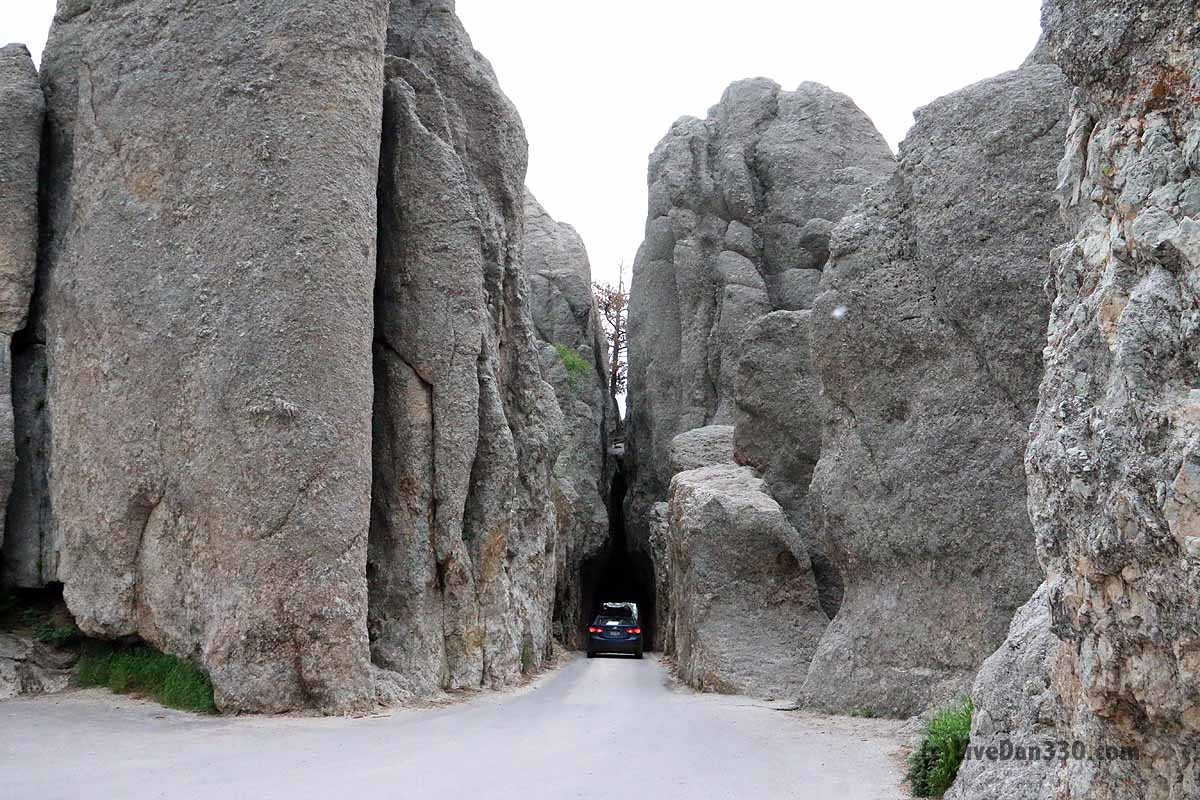 Needles Highway Dan330