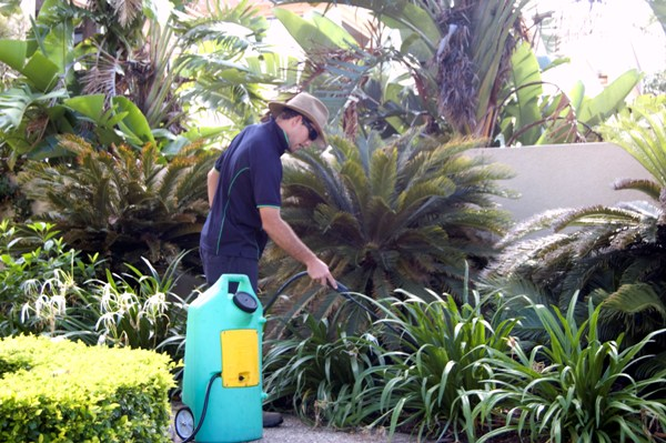 Lawn Gardening Pest Control