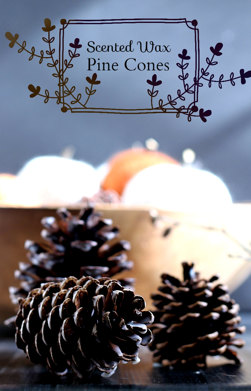 Scented Wax Pine Cones pin ~ gardenmatter.com