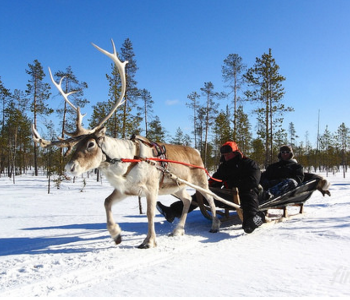 Top Tips For Enjoying A Family Trip To Lapland