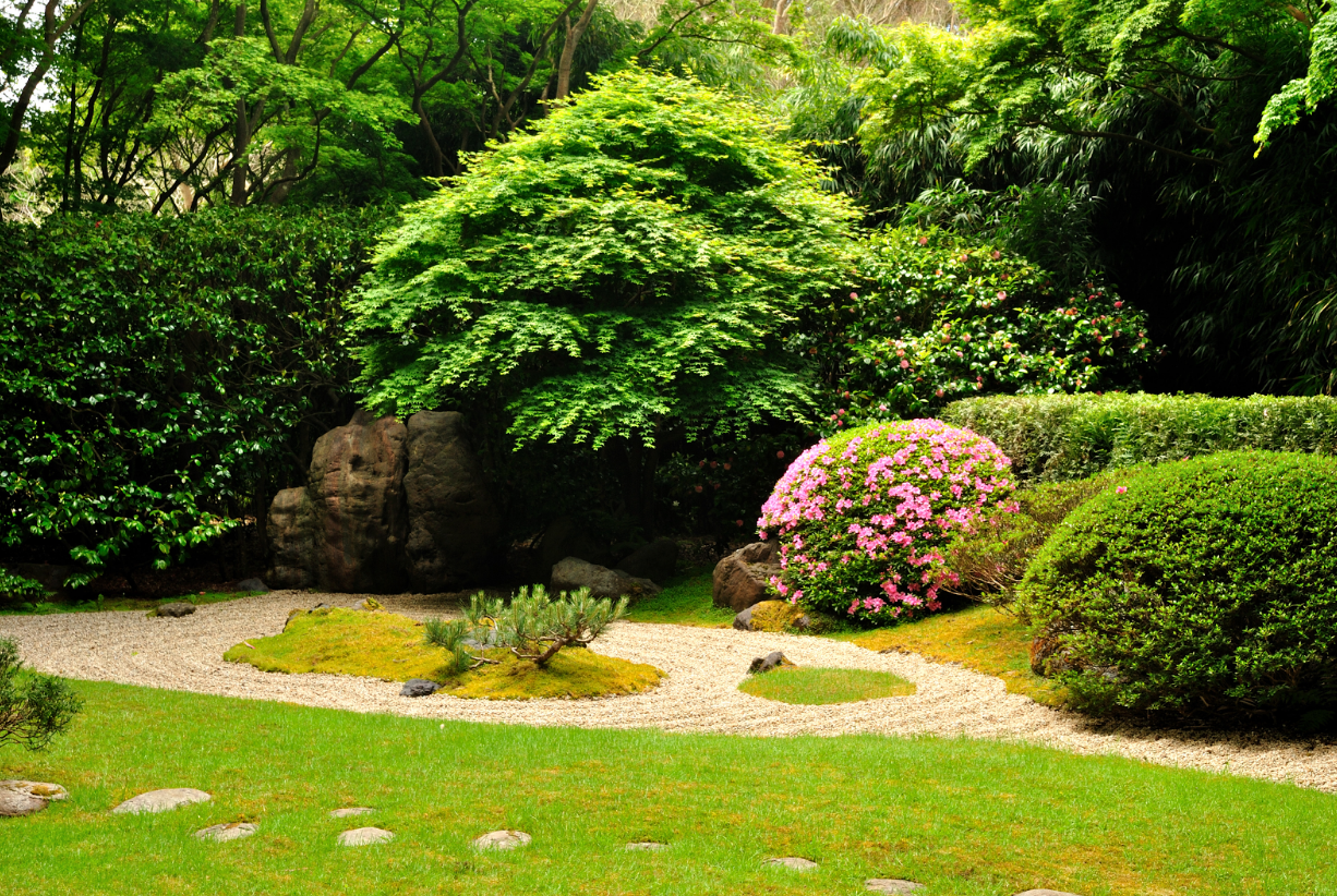How To Make Your Garden Look Amazing From A Mile Away Dan330