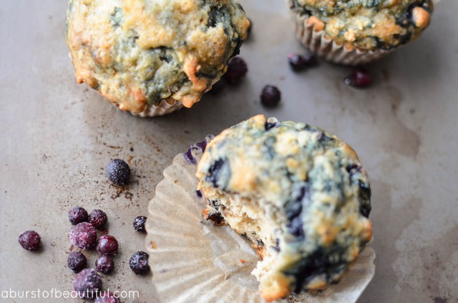 The-Best-Blueberry-Muffin-Recipe_7