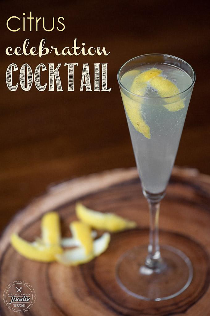 citrus-celebration-cocktail