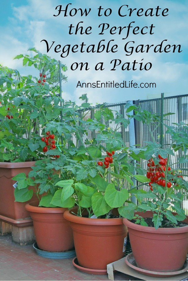 how-to-create-the-perfect-vegetable-garden-on-a-patio