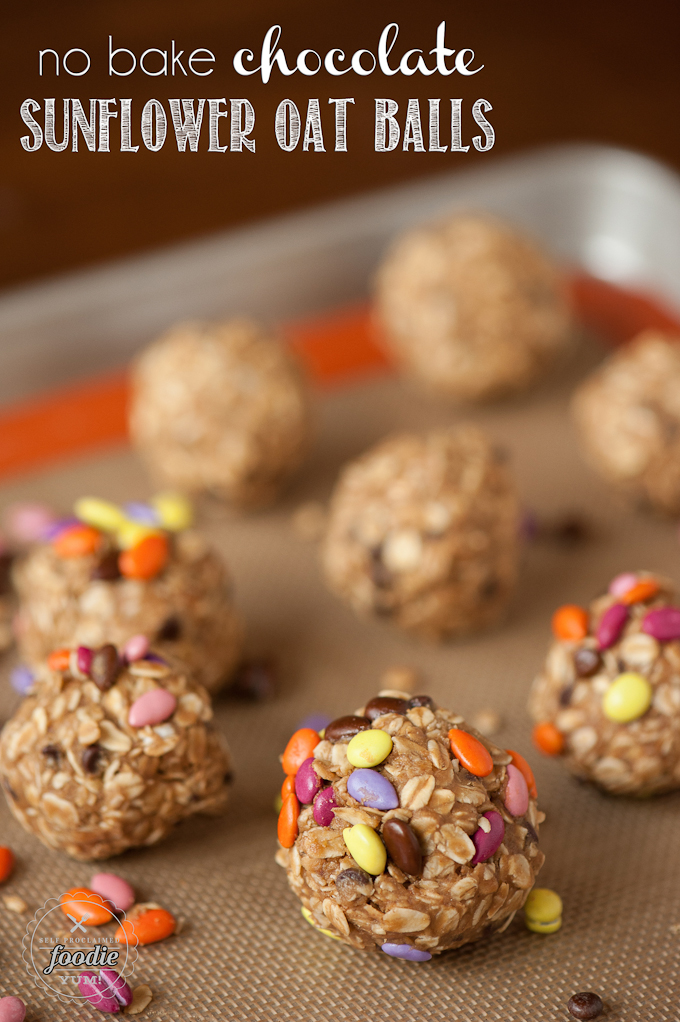 no-bake-chocolate-sunflower-oat-balls