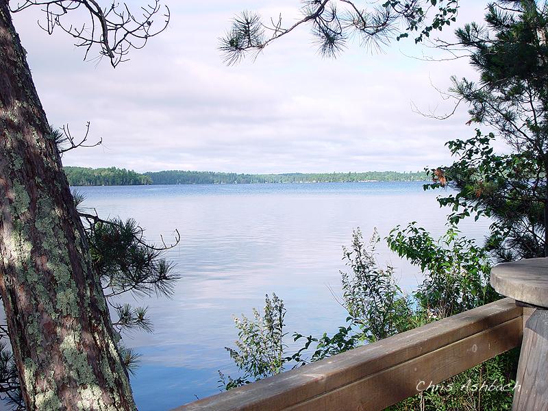 elbow lake cabin