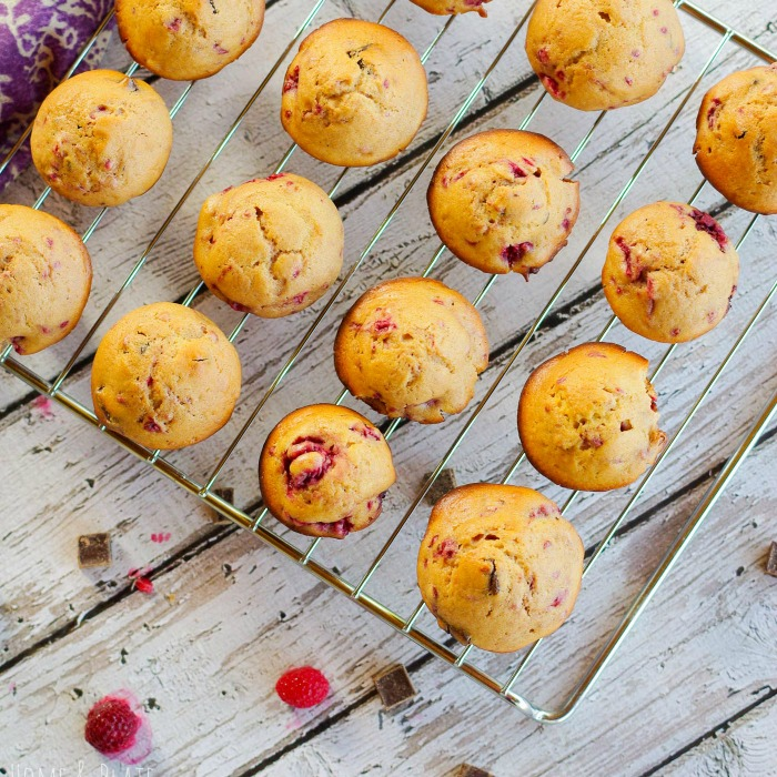 raspberry-dark-chocolate-chunk-muffins-6