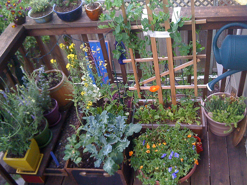 Balcony Garden: Epic Places In Small Spaces – Dan330