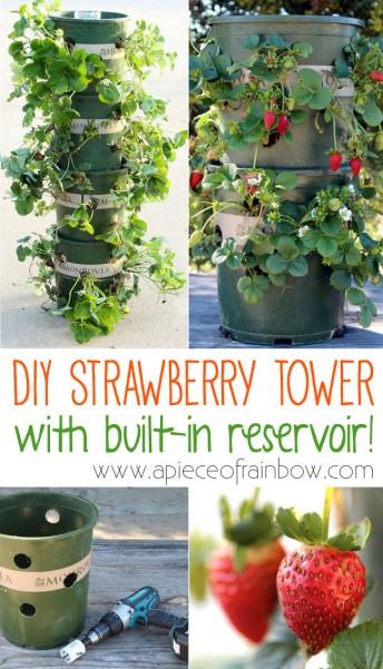 strawberry-tower-apieceofrainbowblog-13