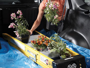 tips-for-easier-gardening-10-plant-transport-sl